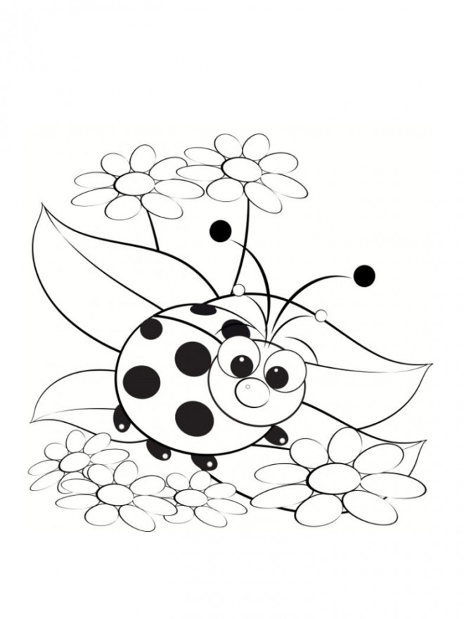 Coloriage mod le coccinelle dessin gratuit imprimer - Modele dessin gratuit a imprimer ...