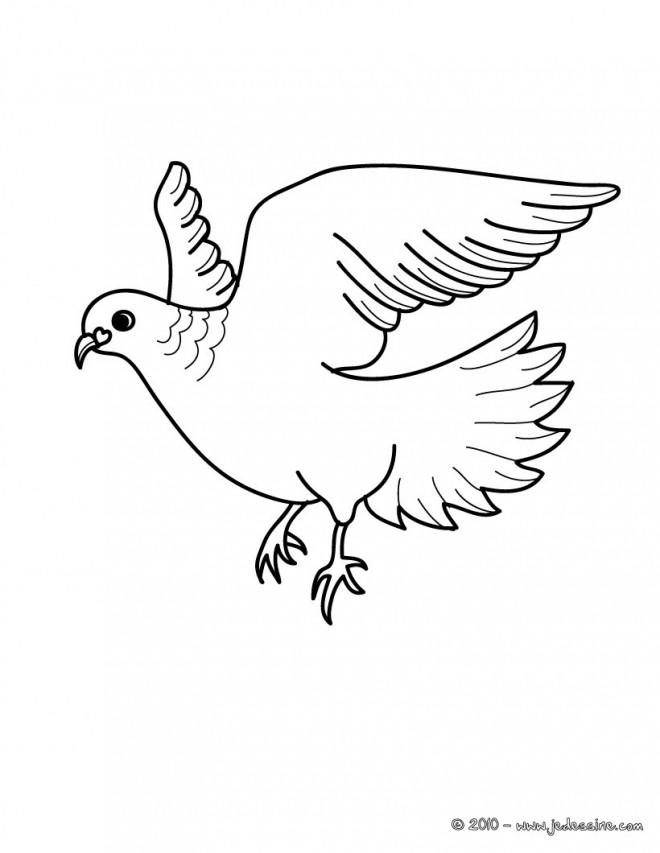 Coloriage belle colombe en vol dessin gratuit imprimer - Coloriage colombe ...