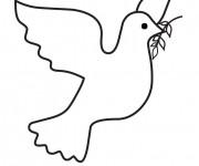 Coloriage colombe 24 dessin gratuit imprimer - Dessin colombe gratuit ...