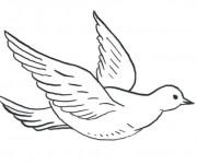 Coloriage colombe gratuit imprimer - Colombe coloriage ...