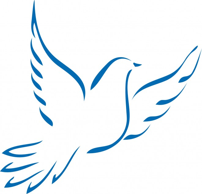 Coloriage colombe 61 dessin gratuit imprimer - Coloriage colombe ...