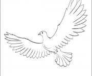Coloriage colombe 7 dessin gratuit imprimer - Colombe coloriage ...