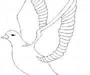 Coloriage dessin  Colombe 8