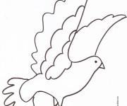 Coloriage et dessins gratuit Colombe au crayon à imprimer
