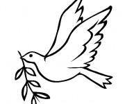 Coloriage et dessins gratuit Colombe de la Paix maternelle à imprimer