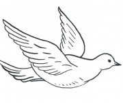 Coloriage et dessins gratuit Colombe en vol à imprimer