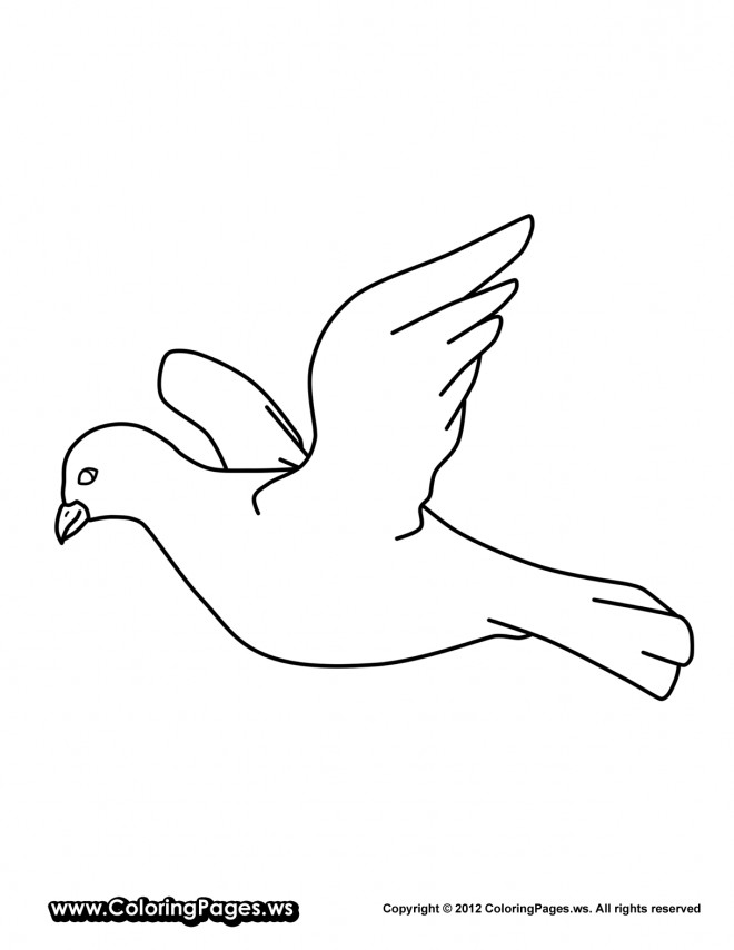 Coloriage colombe facile dessin gratuit imprimer - Coloriage colombe ...