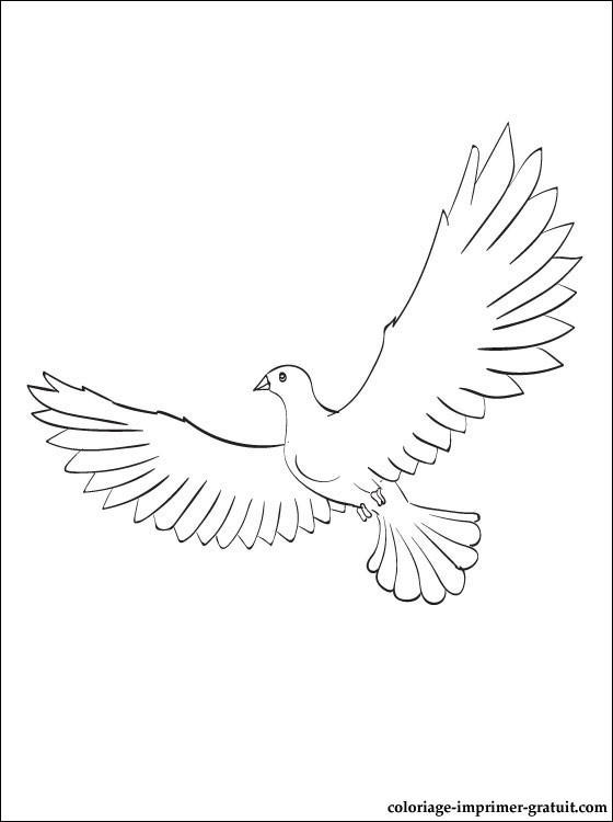Coloriage et dessins gratuits Colombe ouvre ses ailes à imprimer