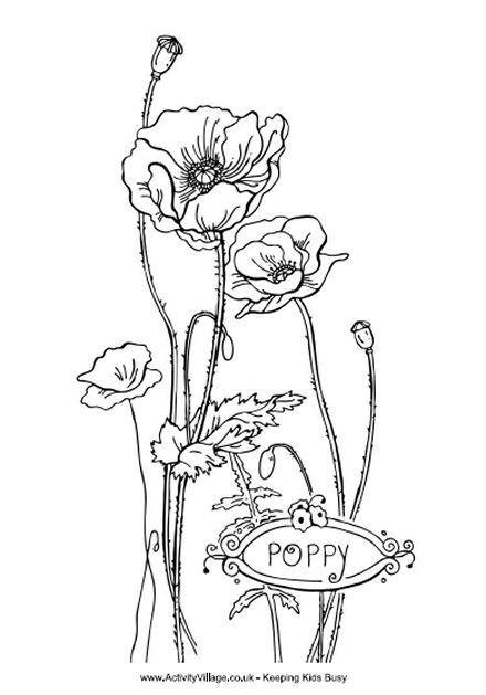 Coloriage belle fleur coquelicot dessin gratuit imprimer - Belle fleur a dessiner ...