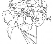 Coloriage Bouquet de Coquelicot