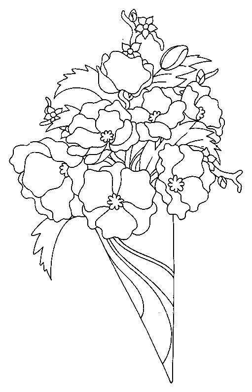 Coloriage et dessins gratuits Bouquet de Coquelicot à imprimer