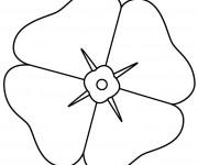 Coloriage dessin  Coquelicot 7