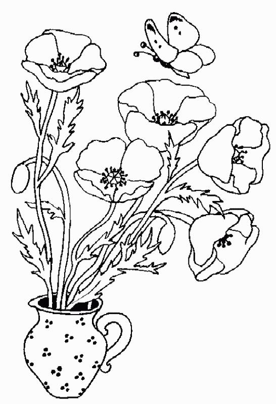 Coloriage et dessins gratuits Coquelicot et Papillon à imprimer