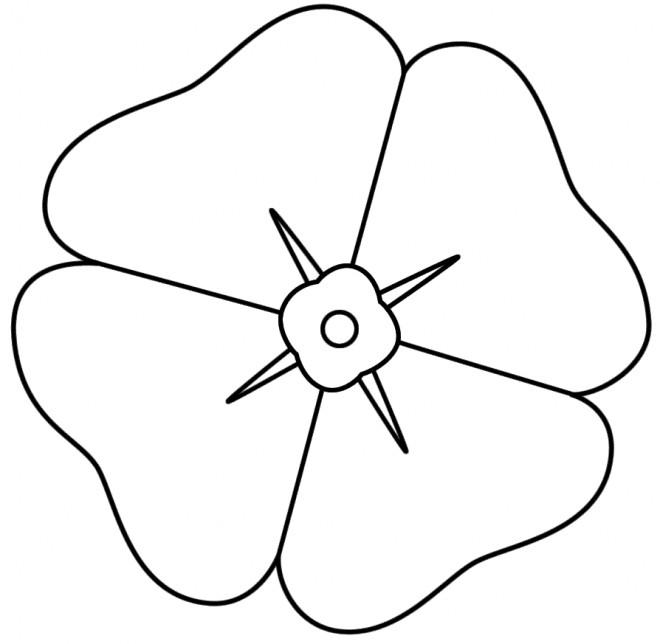 Coloriage coquelicot p tales dessin gratuit imprimer - Coloriage fleur 8 petales ...