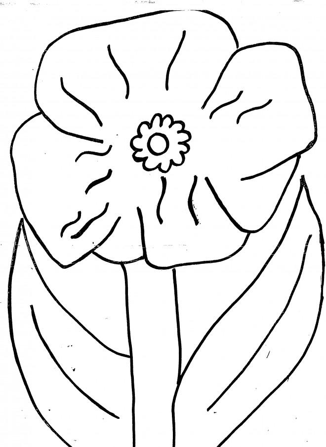 Coloriage et dessins gratuits Coquelicot simple à découper à imprimer