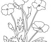 Coloriage Fleur et Plante