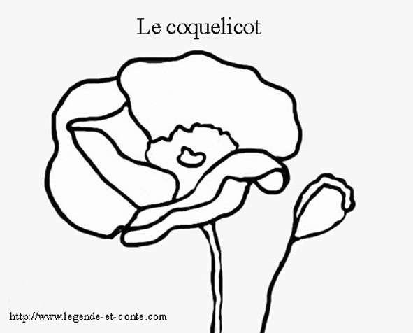 Coloriage et dessins gratuits Le Coquelicot à imprimer