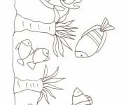 Coloriage dessin  Corail 14