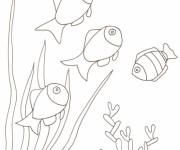 Coloriage dessin  Corail 7