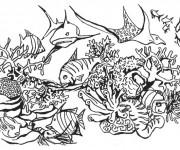 Coloriage Corail Poissons de mer en vecteur