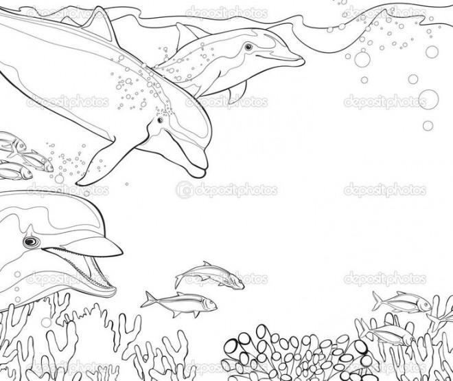Coloriage et dessins gratuits Dauphins et Corail à imprimer