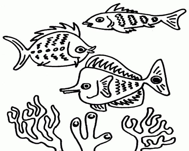 Coloriage et dessins gratuits Poissons et Coraux dans la mer à imprimer