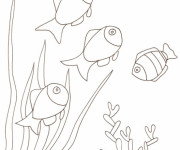 Coloriage Poissons nagent sur le Corail
