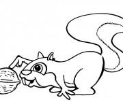 Coloriage et dessins gratuit Ecureuil 10 à imprimer