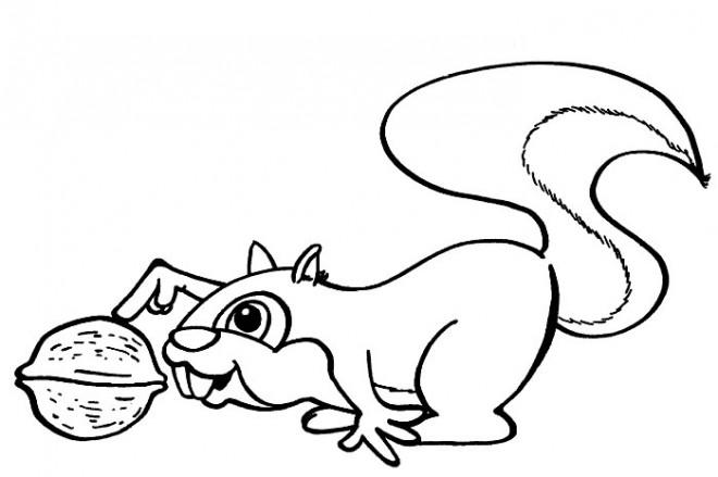 Coloriage et dessins gratuits Ecureuil 10 à imprimer