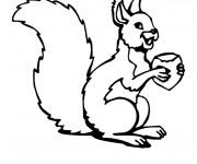 Coloriage et dessins gratuit Ecureuil 17 à imprimer