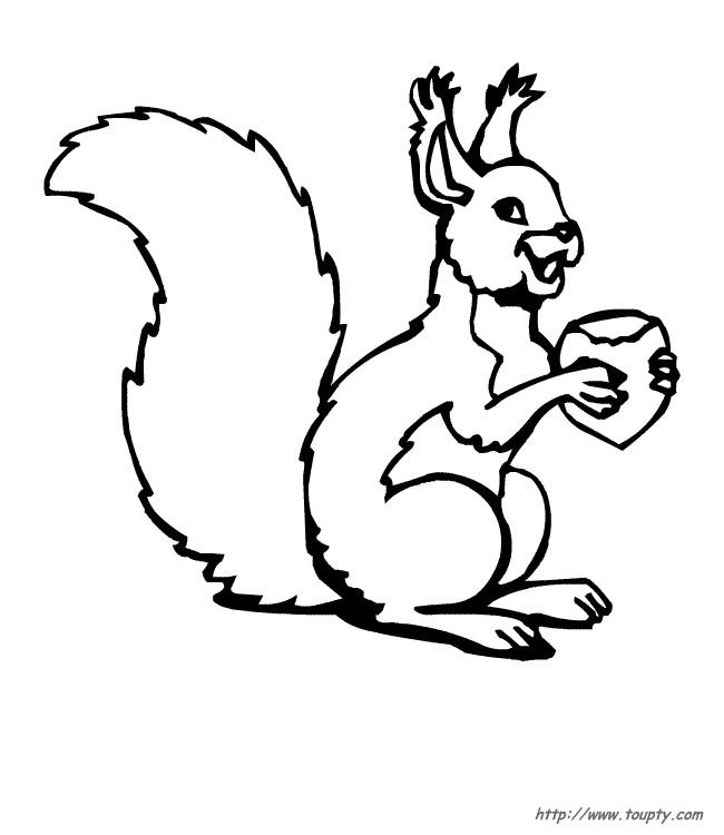 Coloriage et dessins gratuits Ecureuil 17 à imprimer