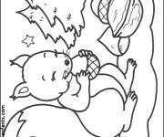 Coloriage et dessins gratuit Ecureuil 18 à imprimer