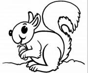 Coloriage et dessins gratuit Ecureuil 23 à imprimer
