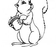 Coloriage et dessins gratuit Ecureuil 24 à imprimer