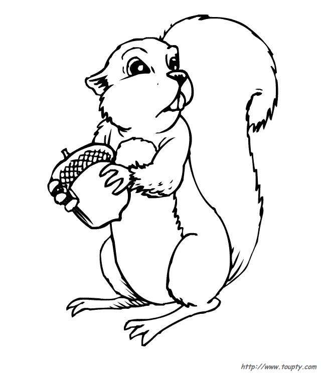 Coloriage et dessins gratuits Ecureuil 24 à imprimer