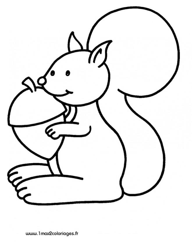 Coloriage et dessins gratuits Ecureuil 26 à imprimer