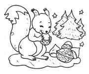 Coloriage et dessins gratuit Ecureuil 3 à imprimer
