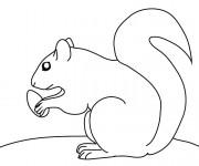 Coloriage et dessins gratuit Ecureuil 30 à imprimer