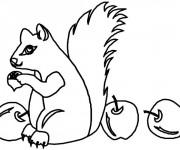 Coloriage et dessins gratuit Ecureuil 32 à imprimer