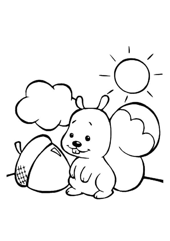 Coloriage et dessins gratuits Ecureuil 34 à imprimer