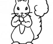 Coloriage et dessins gratuit Ecureuil 38 à imprimer