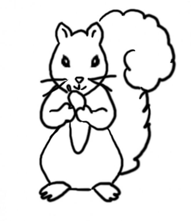 Coloriage et dessins gratuits Ecureuil 38 à imprimer