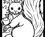 Coloriage et dessins gratuit Ecureuil 39 à imprimer
