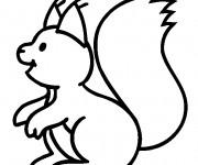 Coloriage et dessins gratuit Ecureuil 4 à imprimer