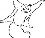Coloriage et dessins gratuit Ecureuil 42 à imprimer