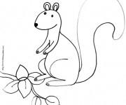 Coloriage et dessins gratuit Ecureuil 43 à imprimer