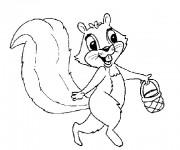 Coloriage et dessins gratuit Ecureuil 47 à imprimer