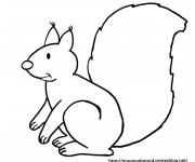Coloriage et dessins gratuit Ecureuil 5 à imprimer