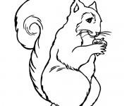 Coloriage et dessins gratuit Ecureuil 50 à imprimer