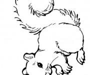 Coloriage et dessins gratuit Ecureuil 52 à imprimer